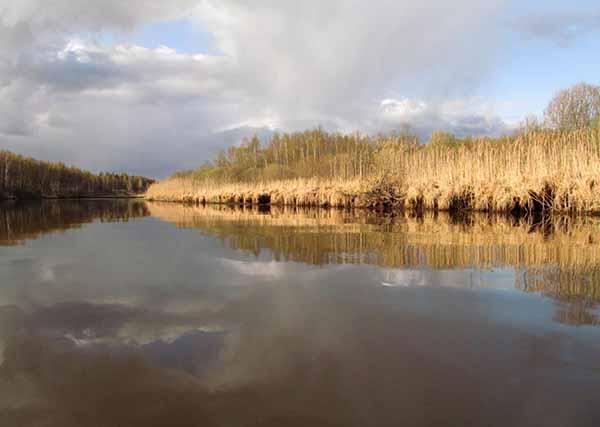 Сражение на реке Омовже