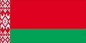 Флаг республики Беларусь (с 1991 года)